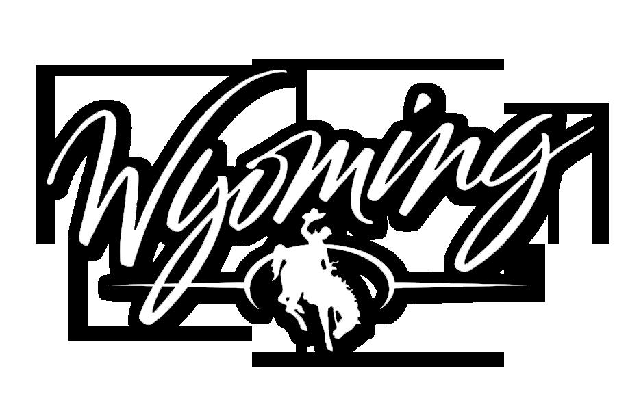 Wyoming Licensing Portal Vertafore
